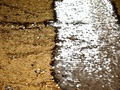Сетка с золотыми пайетками полиэстер ГБ450
